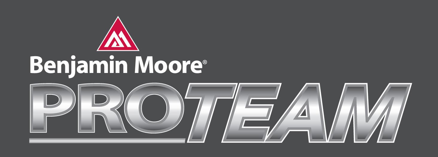 Pro Team Logo_1WhiteOL