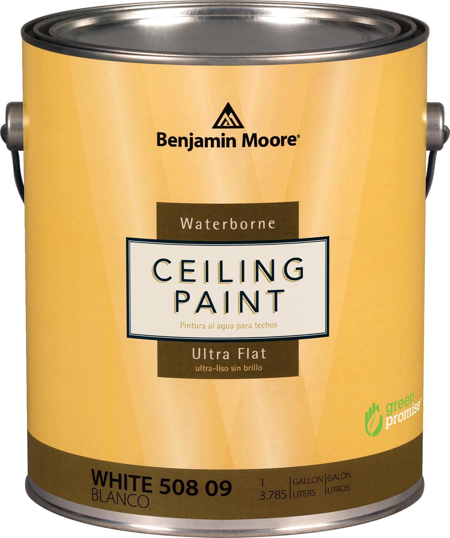 Benjamin moore waterborne ceiling paint thybony paint for Is benjamin moore paint good